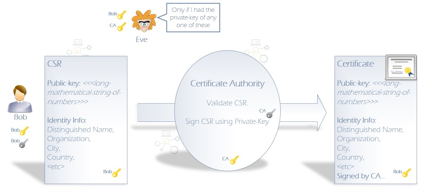 CSR to Signed Certificate Process